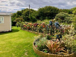 Swallow Point Caravan Park flowers